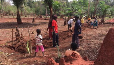 proyecto-ecoagricola-aldevaran-2